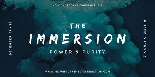 The Immersion 2017