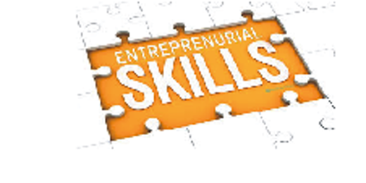 Entrepreneurial Skills Development Program