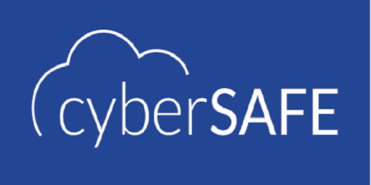 CyberSAFE™ Securing Assets for End Users Training and Exam
