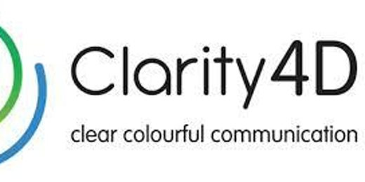 Clarity 4D Colours at Work Team and Leadership Workshop